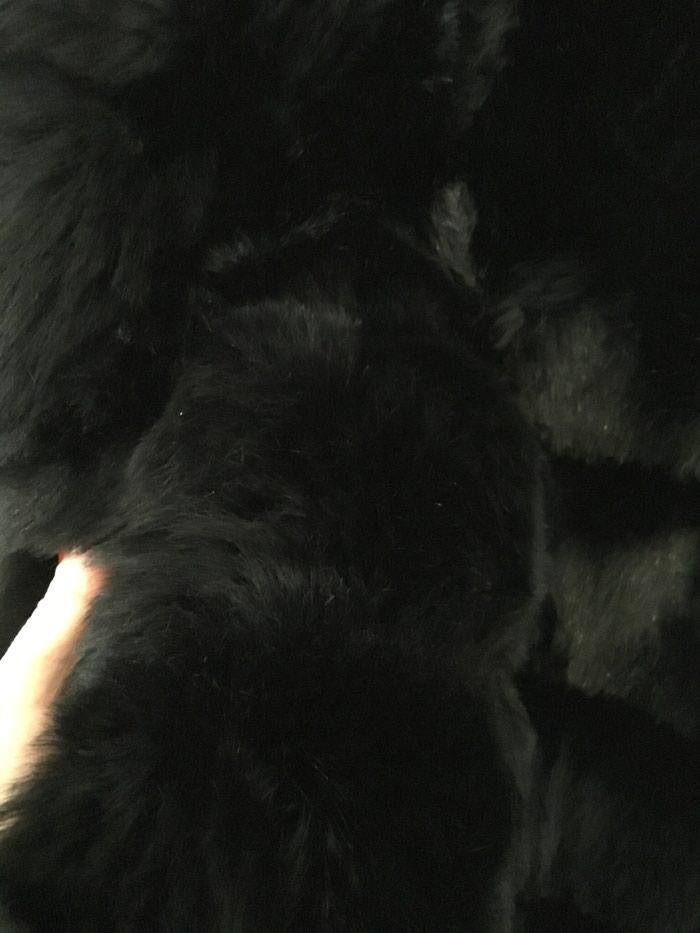 Αμανικη γούνα χρώμα μαύρο one size.δενεχει φορεθει ποτε.. Photo 3