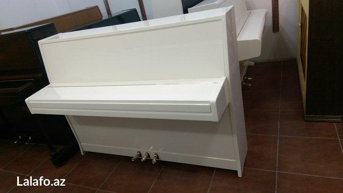 Bakı şəhərində Çexiya  istehsalı 3 pedallı professional pianino satılır. 5il zemanet