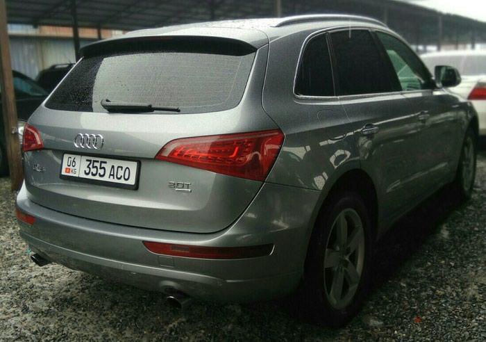 Audi Q5 2009. Photo 2