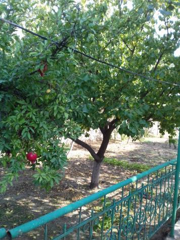 Satış Evlər vasitəçidən: 250 kv. m., 6 otaqlı. Photo 5