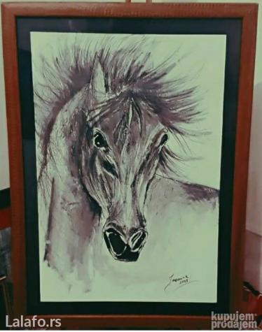 Konj 55x40 umetnicka slika akademski slikar jasmina rankovic - Sabac