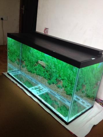 325 litrelik teze hazirlanip akvarium . Photo 2