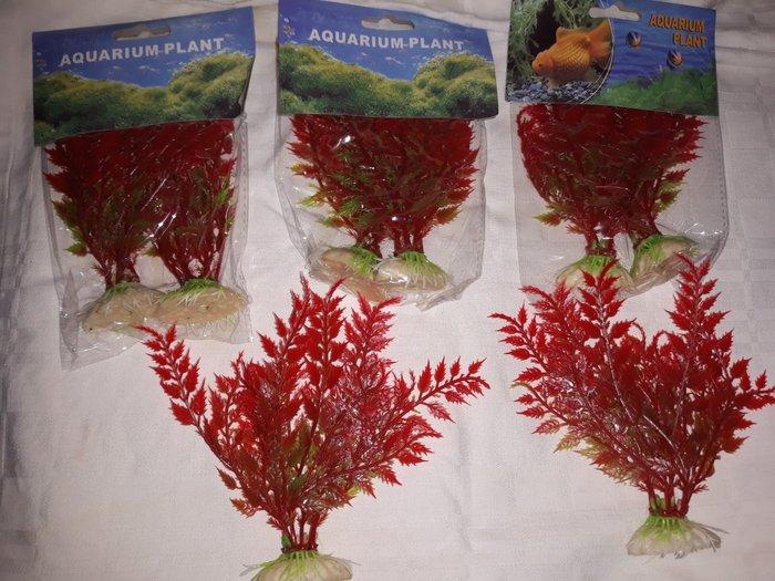 Suni bitkiler akvarium ucun. Photo 1