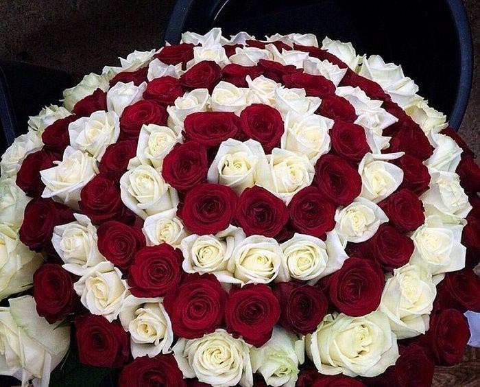 Розы -  101роза -  букет бесконечность!!!