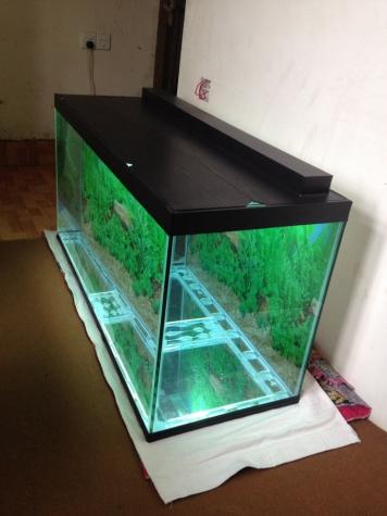 325 litrelik teze hazirlanip akvarium . Photo 3