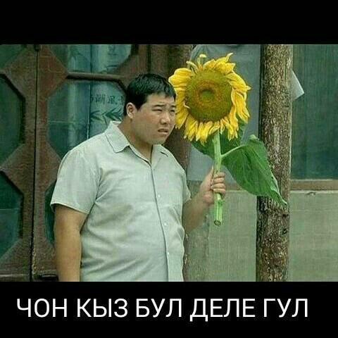 требуется  кухня в аренду в Бишкек