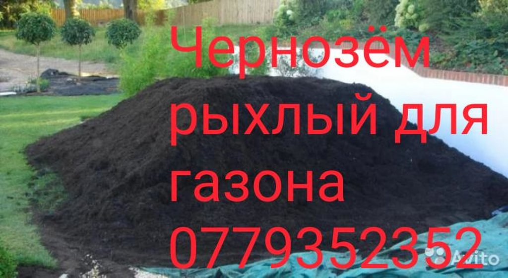 Чернозём для Газона без сарника