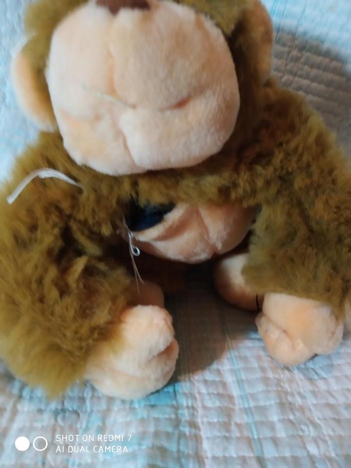 Маленький тигра 50 сом Гарила порванная 30 сом и верблюд 50 сом. Photo 1