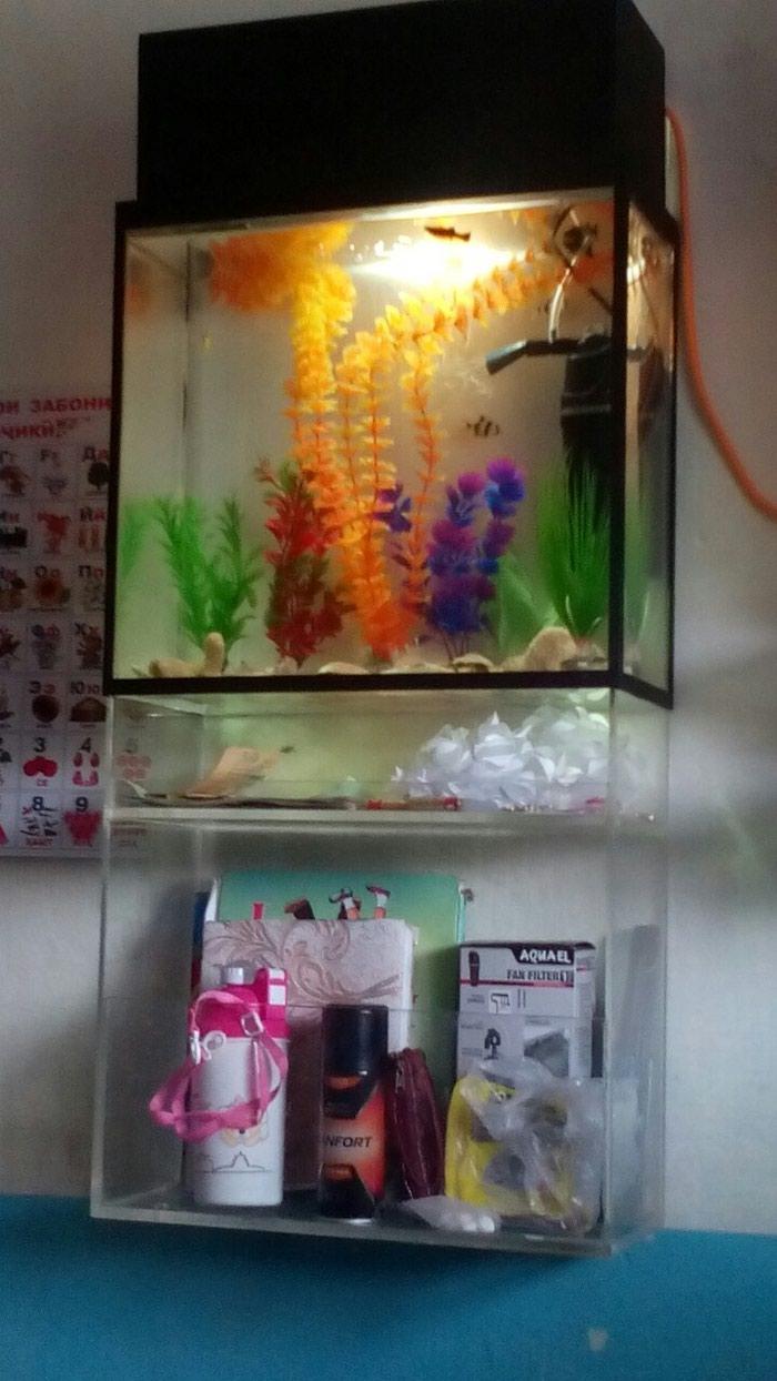 Продается аквариум навесной полка. Photo 0