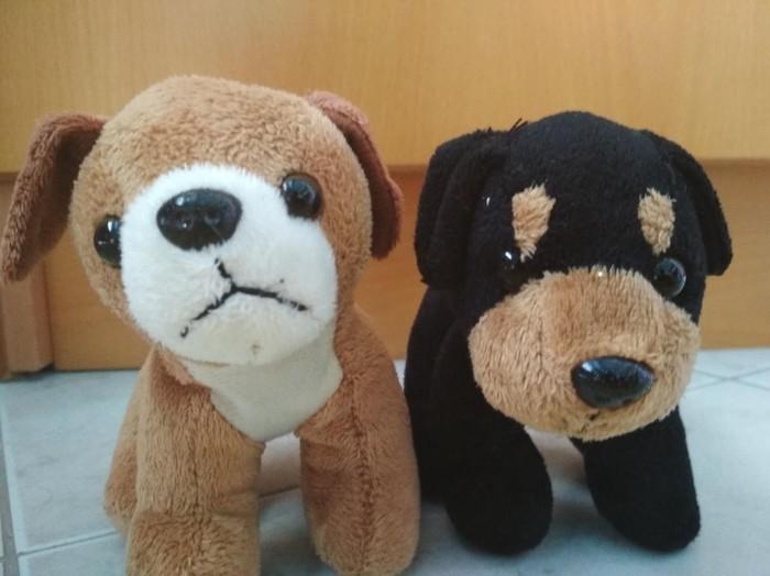 2 λουτρινα αρκουδακια σκυλακια Αποστολη σε ολη την Ελλαδα σε Περιφερειακή ενότητα Θεσσαλονίκης