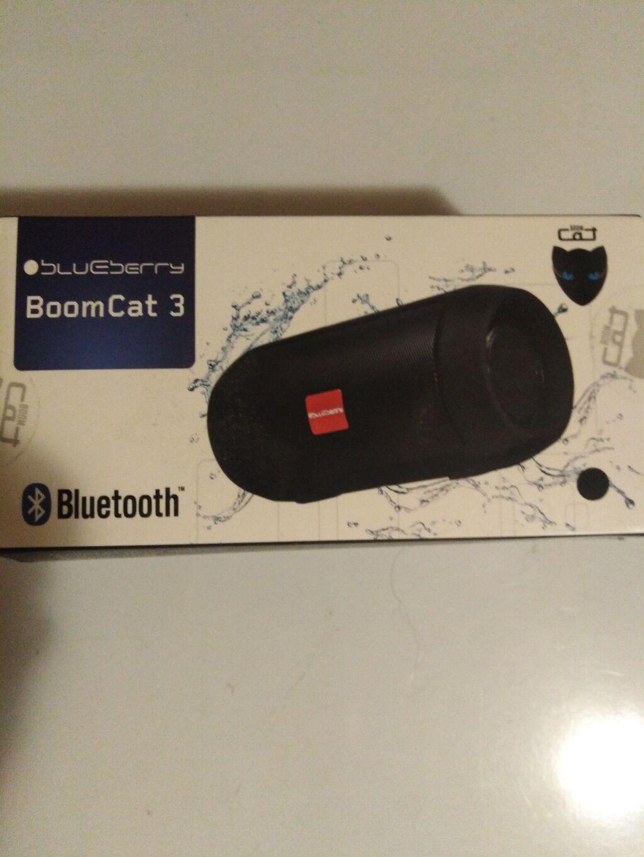 Bluetooth zvučnjak Blueberry Boom Cat 3