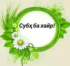 .  . Photo 2
