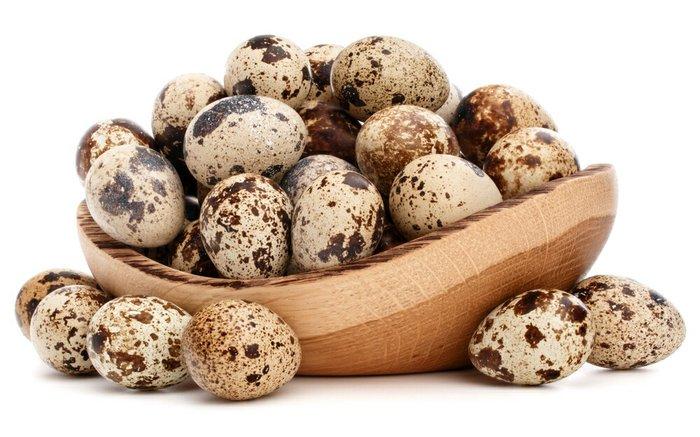 Куплю перепелинные яйца для инкубации 1400 штук по 3 сома в Лебединовка