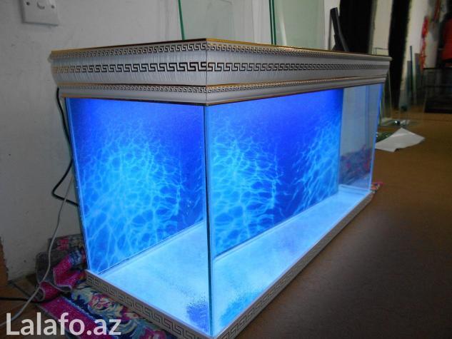Akvarium sifariwleri qebul olunur versage  . Photo 3