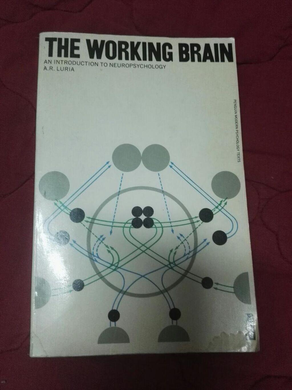 The working brain