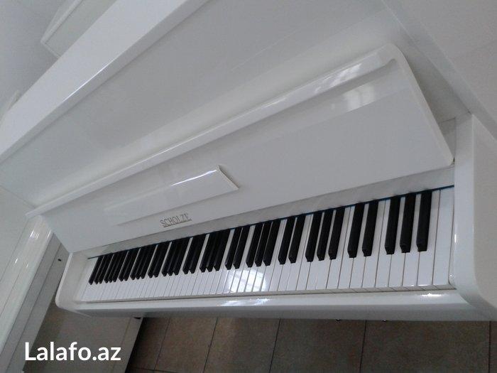 Bakı şəhərində Tam yeni scholze markalı piano - Çexoslovakiya istehsalı, ideal