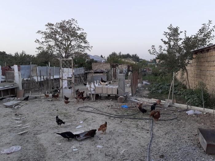 Satış Evlər mülkiyyətçidən: 3 kv. m., 3 otaqlı. Photo 0