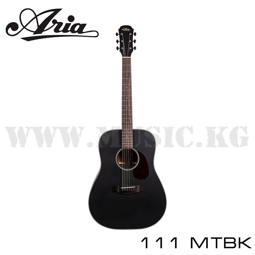 Гитара ARIA-111 MTBK  (цвет MTBK черный матовый)
