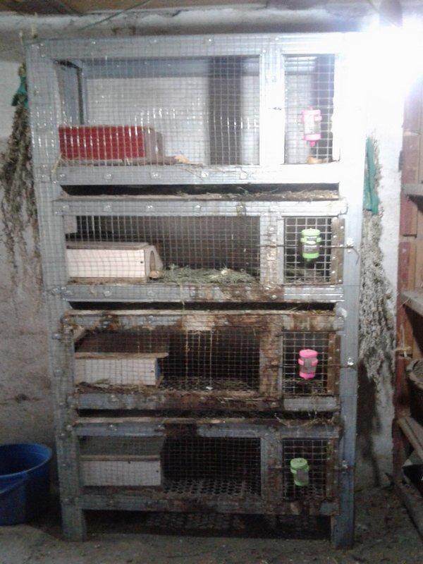 Клетка для морских свинок,декоративных кроликов. Длина - 82 в Бишкек