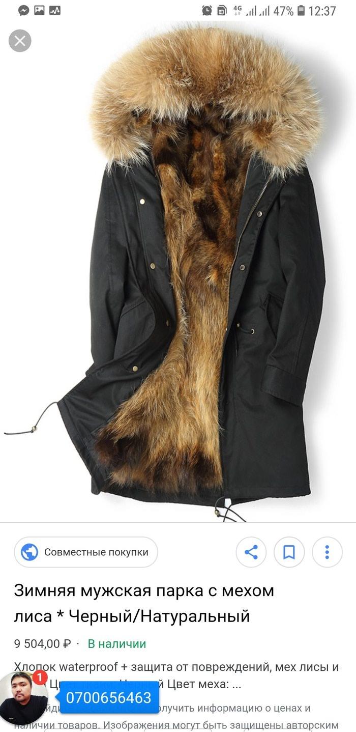 a0729e9da147 Продажа Парка волк размер М цена окончательно за 8000 KGS в Бишкеке ...