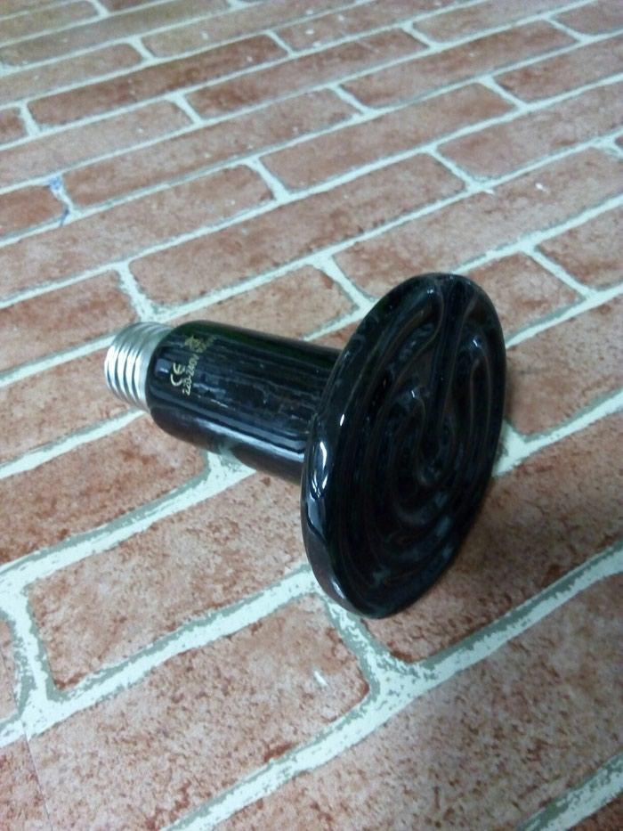 Inqubator ucun lampa 75w-250w qiymetler 6 aznden 14 azn dek. Photo 2
