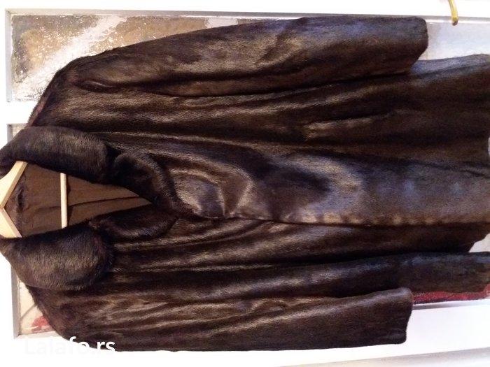 Kratka bunda od vidre  - Indija