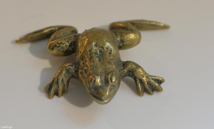 Μπρουτζινος βατραχος