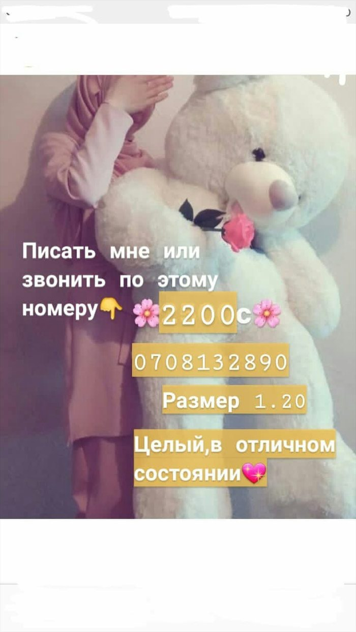 2200сом мишка ( доставка кант Бишкек)100сом σε Кант