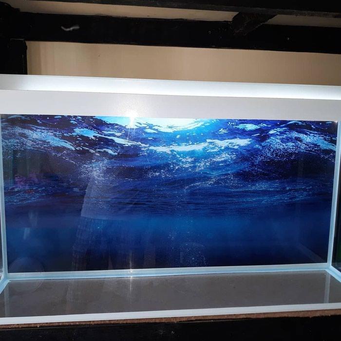 1metrelik akvarium  bawqalarida var  baliqlar var  avadanliqlar var. Photo 2