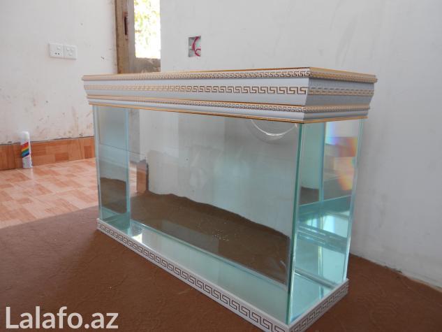 Versage akvariumlarina sifariw qebul olunur) . Photo 1