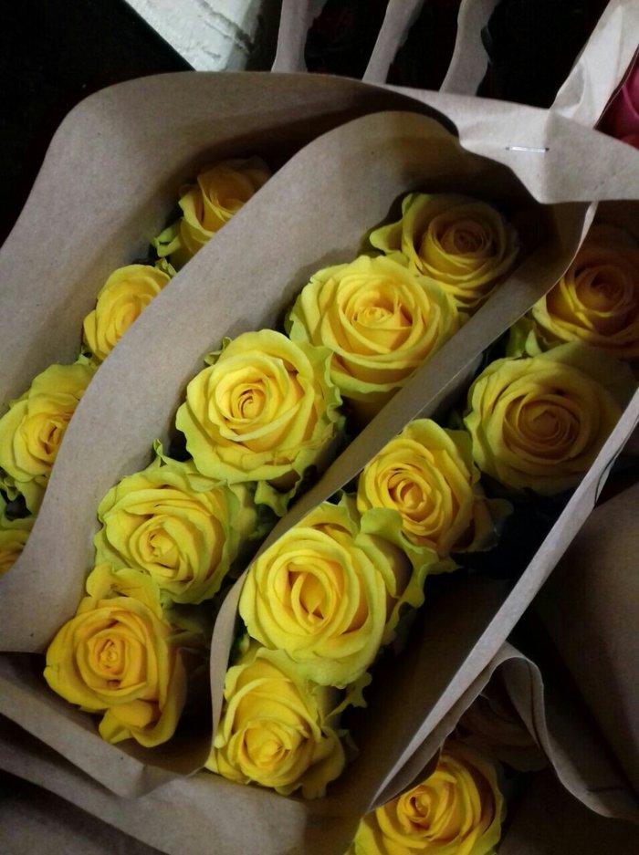 Местные розы зимой в бишкеке от 80 сом в Бишкек