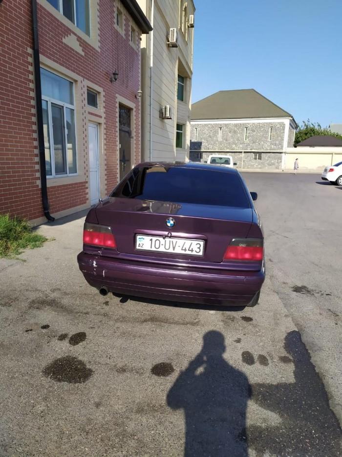 BMW 316 1994. Photo 3