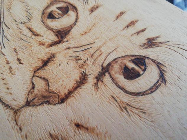 Πυρογραφια γάτας σε φυσικό ξύλο pyrography . Photo 1
