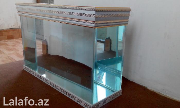 Akvarium sifariwleri qebul olunur versage  . Photo 5