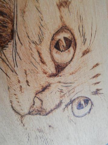 Πυρογραφια γάτας σε φυσικό ξύλο pyrography . Photo 2