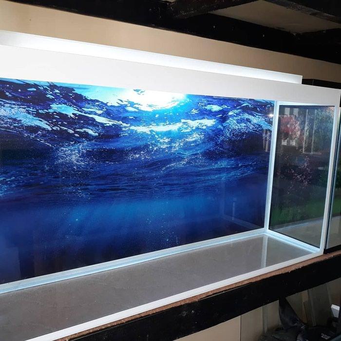 1metrelik akvarium  bawqalarida var  baliqlar var  avadanliqlar var. Photo 1