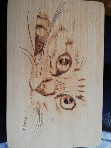 Πυρογραφια γάτας σε φυσικό ξύλο pyrography . Photo 0