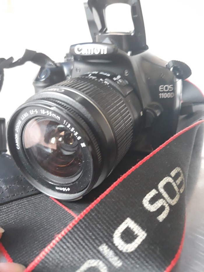 Canon. Photo 3