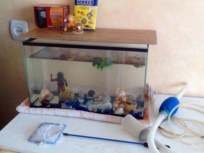 Срочно аквариум 20 литров с рыбками и со всем содержимым в Бишкек