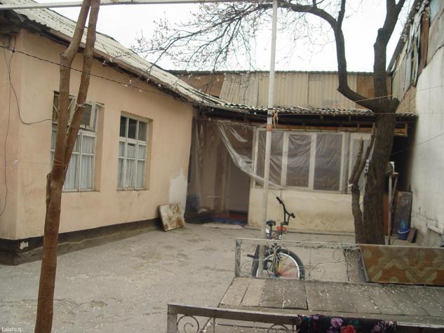 Сзади Шоми Бухоро Г. Душанбе ул. Роҳи нав(Рохи нав) 158 спросите в Душанбе
