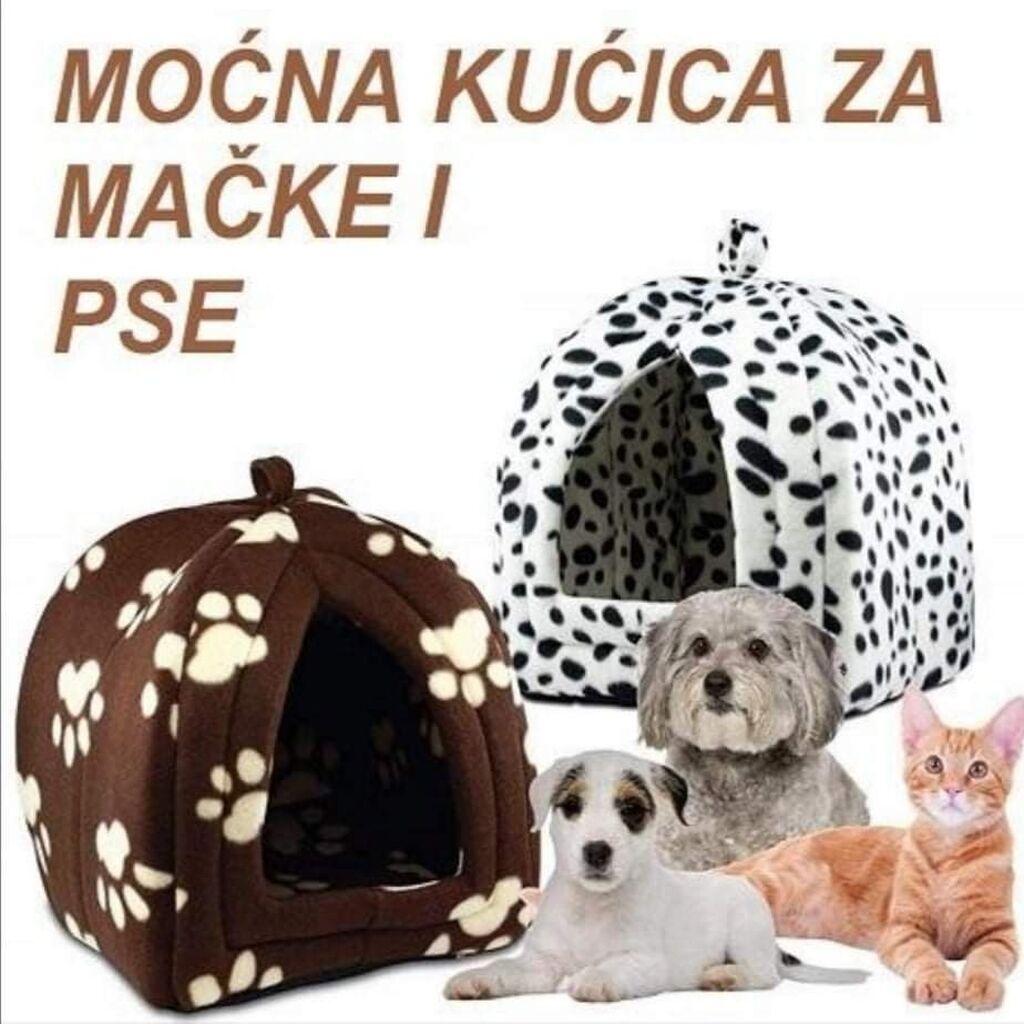 Oprema za kućne ljubimce - Surdulica: