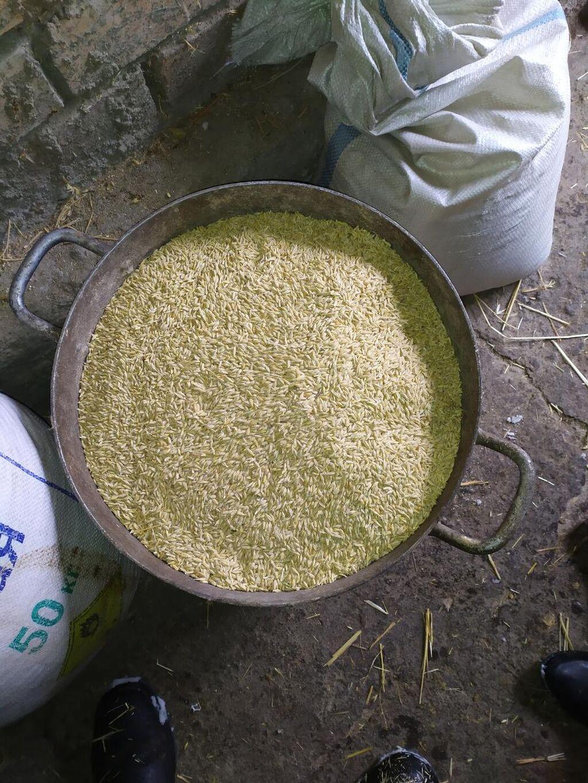 Арпа таза ячмен чистый 5 тонна бар