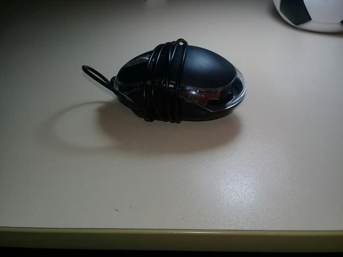 Мыши. Photo 0