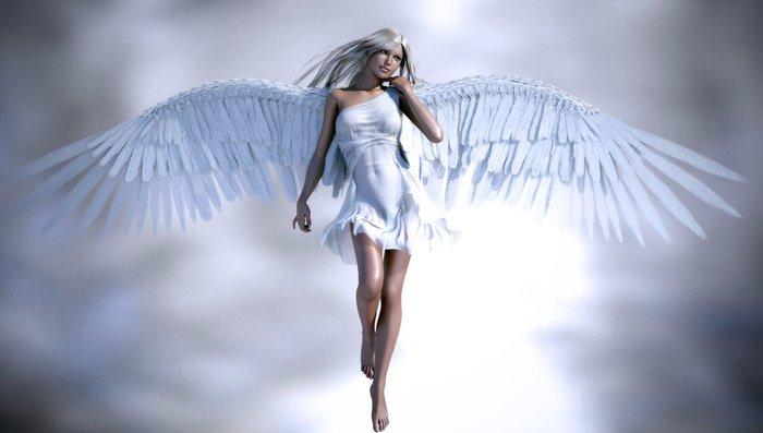 White angel agenciji potrebne vredne i odgovorne saradnice na poziciji - Beograd
