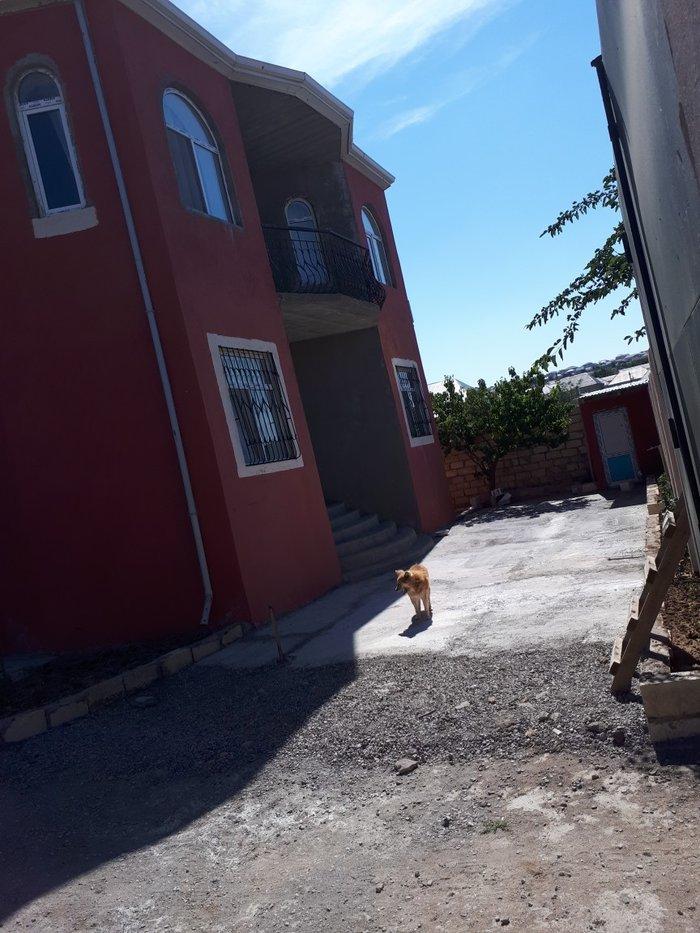 Sulutəpədə 4 sotun içindən 2 mərtəbə və mansarı olan villa. Photo 0