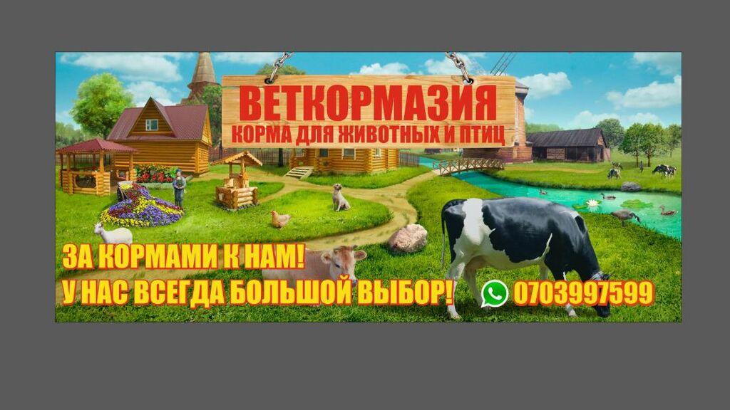 Специализированные корма для сельхоз животных по оптовой цене в розницу