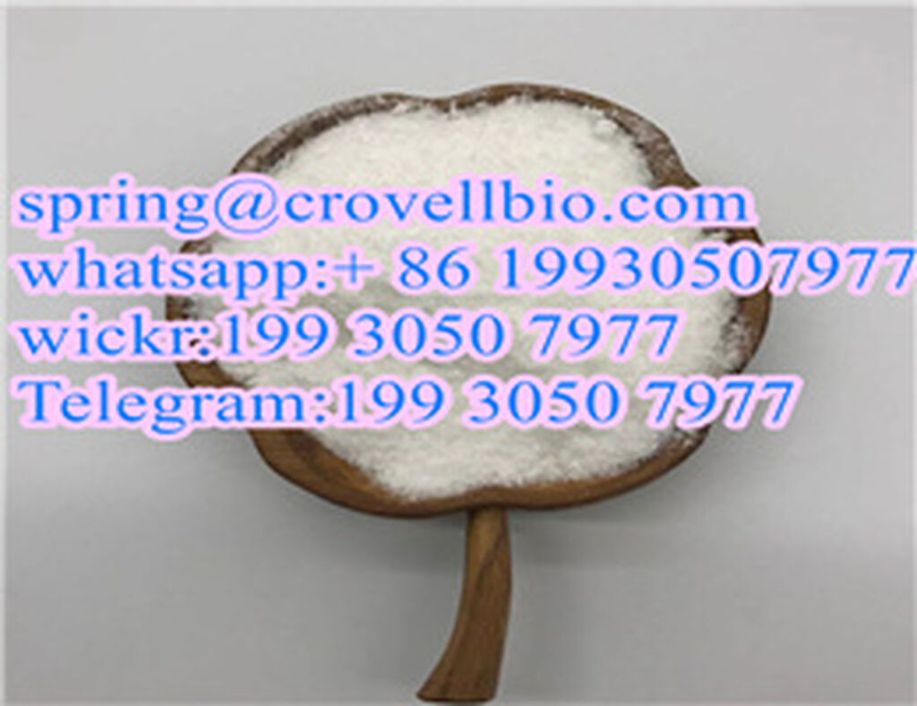 Other - Prachatice:  CAS 9048-46-8 Serum albumin with factory supply +86  spring@crovellbi