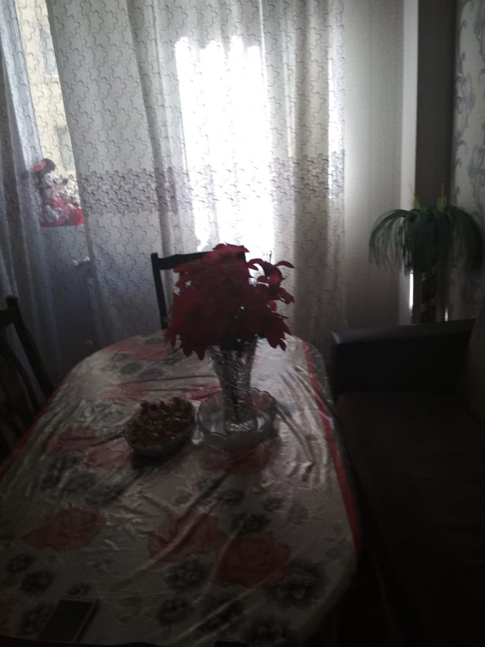 Mənzil satılır: 1 otaqlı, 41 kv. m., Xırdalan. Photo 1