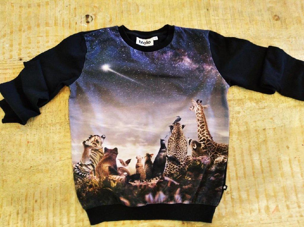 Molo μπλουζάκι βαμβακερό για παιδάκι 5-6 ετων άριστη κατασταση