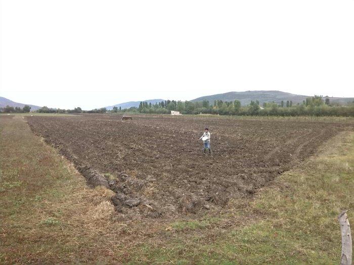 Quba şəhərində quba rayonu sebetler kendidi 1 hektari satilir